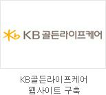 KB골든라이프케어 웹사이트 구축